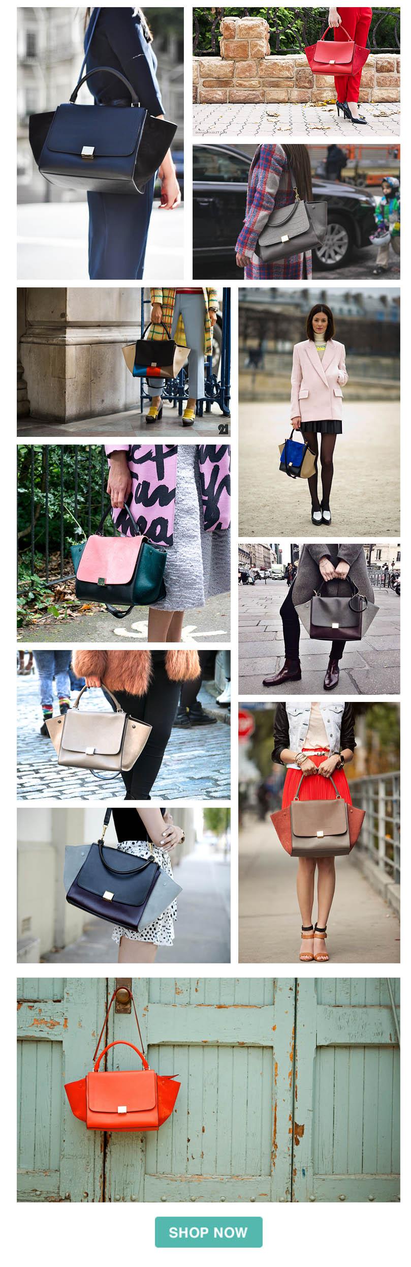 a9734d8fd7d5 (via Spotted Fashion). Celine trapeze bag guide